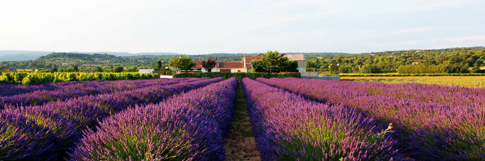 Ferienwohnungen & Ferienhäuser in Frankreich mieten
