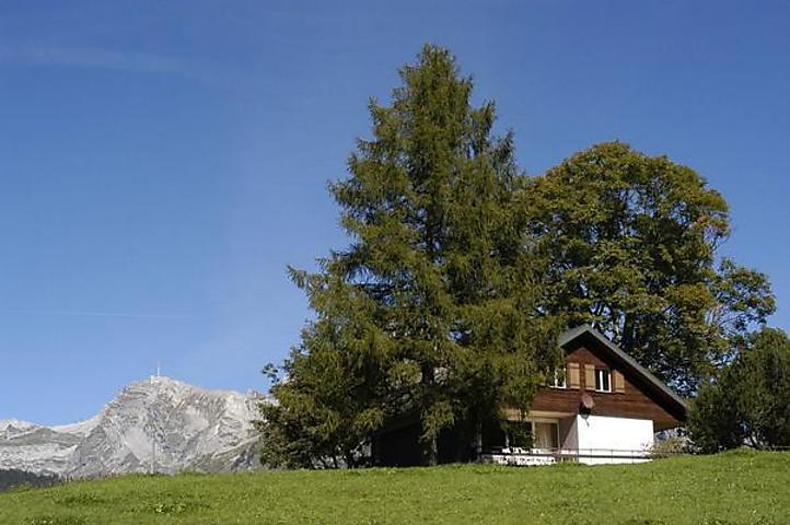 Ferienhaus Am Schwendisee in Wildhaus für 8 Personen, 4 ...