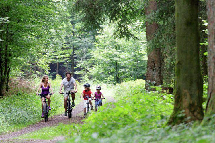 Ferienhaus Center Parcs Bostalsee in Nohfelden für 6 Personen bei